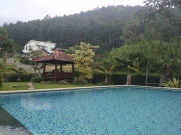 Villa Pinus R10