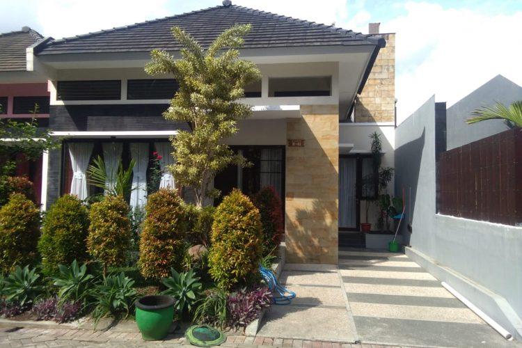 Villa Pinus M41
